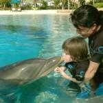 raff-dolphinkiss